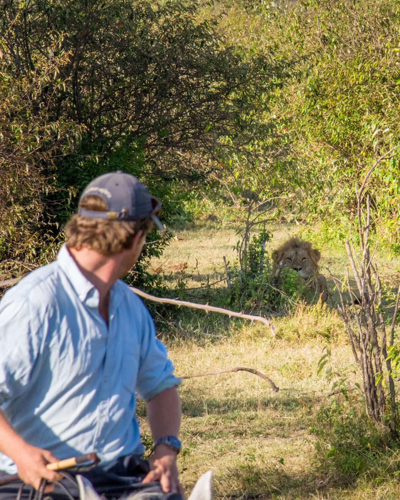 Horseback safari Kenya Masai Mara